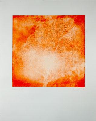 Christel Claudius - Mer Rouge, gravure 30x30cm sur papier 50x40cm