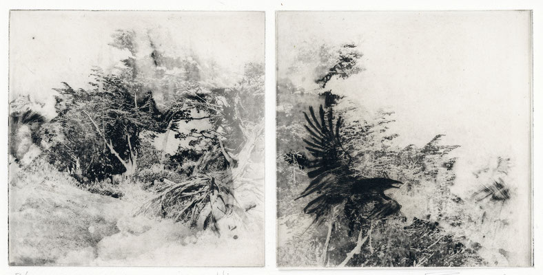 "Isabelle Panaud - gravure -""xynthia"""
