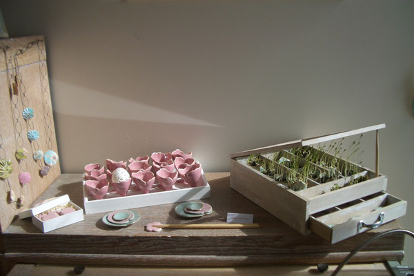 Sophie Gallé-Soas - coquetiers roses - pousses de lentilles -