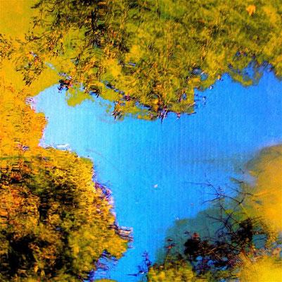 Jacques Cauda - Pastel photographique - Jardin naturel  20ème