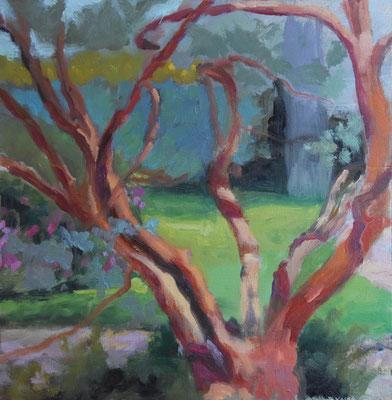 Delphine Germain - peinture - Andromède du Japon - huile sur bois - 21x21cm - 2021