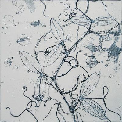 Isabelle Dansin- gravure - Libelule - 20X20cm