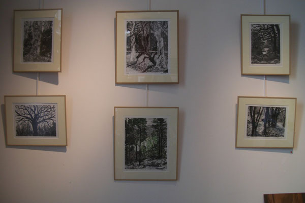 Michelle Boucard - monotypes