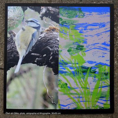 Dominique Berteletti - Duo en bleu  - photo, sérégraphie, et lithographie - 30x30cm