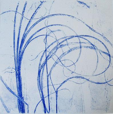 Isabelle Dansin- gravure - Grandes herbes bleues - 25x25cm