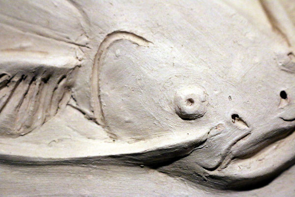 """Marie-Anne Guillemain -  Bas relief """"poisson chat """" - porcelaine"""