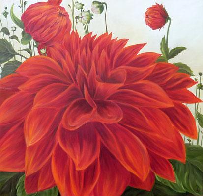 Dalia rouge , Huile sur toile 60x60 cm, 2012.  Disponible