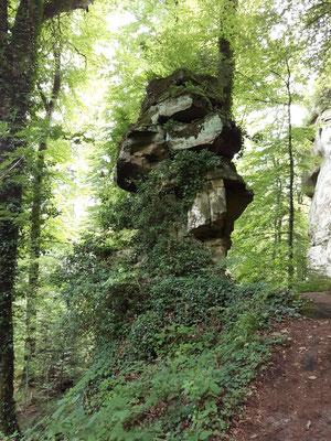 Und immer noch Mullerthal-Trail