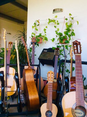 Gitarrenlehrer für fortgeschrittene