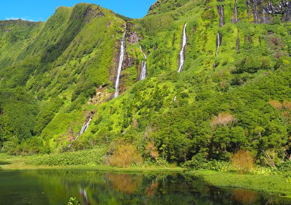 Lago dos Patos - Flores