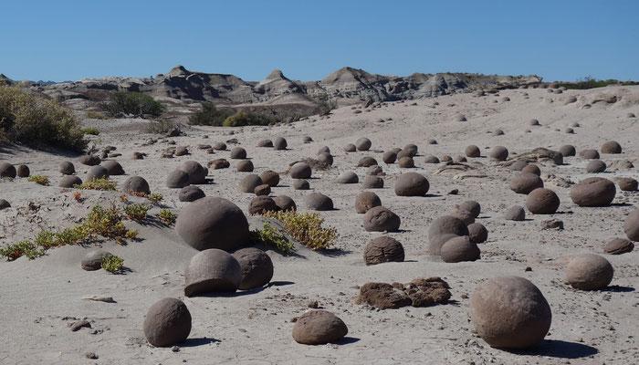 im Valle de la Luna (Argentinien - Ischigualasto)