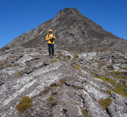Besteigung des Pico  - Pico