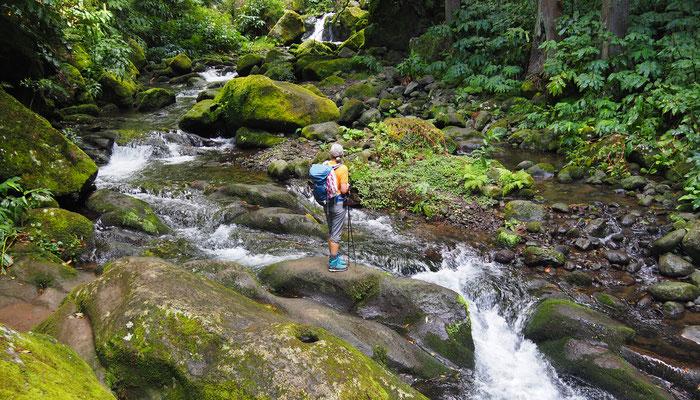 Schluchtenwanderung Faial da Terra - Sao Miguel