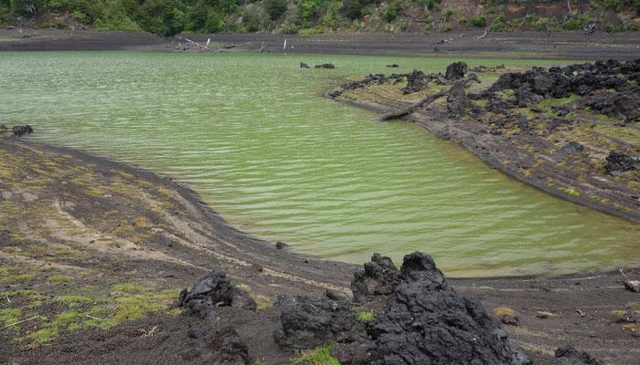 Vulkanlandschaft am Fuß des Lanin