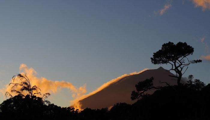 Pico im Abendlicht  - Pico
