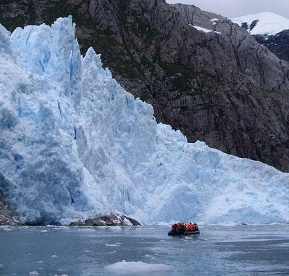 Exkursion zum ins Meer kalbenden Gletscher