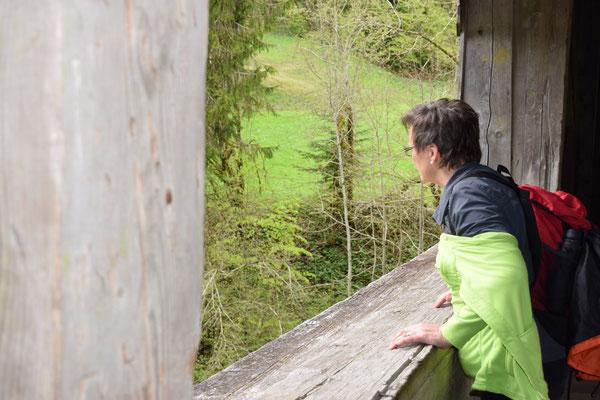 Ausblick von der Negrelli-Brücke