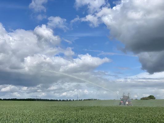 Beregnung in Vorpommern (Foto: David Pilgrim)