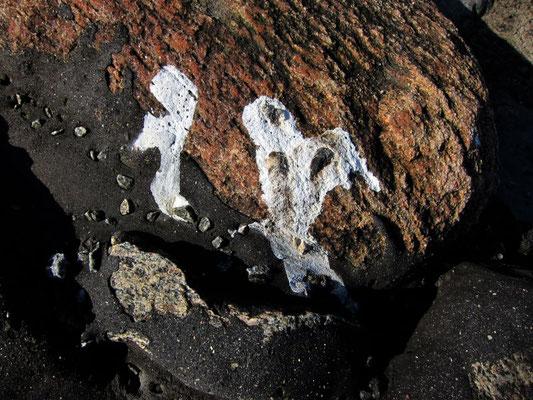 Abstrakte Möwen-Klecksereien