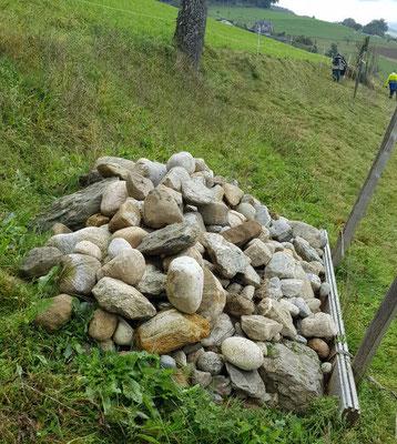Oktober 2020: Ein Steinhaufen für Eidechsen und Blindschleichen.