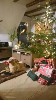 Yako sendet liebe Weihnachtsgrüße