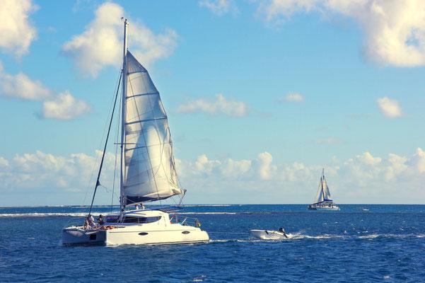 Premium Katamaran segeln