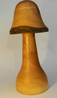 Pilz 10: Kirschbaum, Ø: 45mm - 150mm, H: 350mm