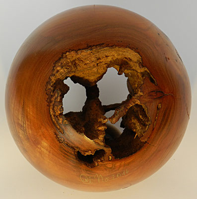 Kugel 5: Mirabelle mit morschem Kern  Ø: 170mm