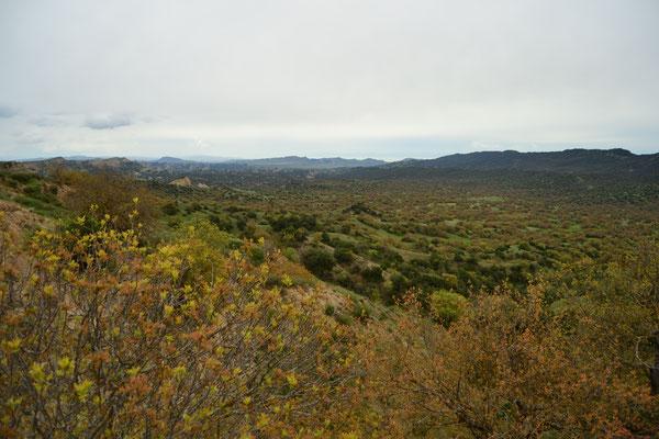 Vashlovani-Nationalpark