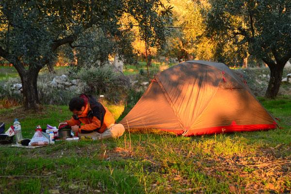 Abendstimmung beim Kochen im Olivenhain