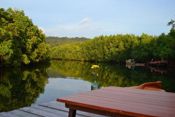 Der Fluss, der an unserer Unterkunft vorbeifließt