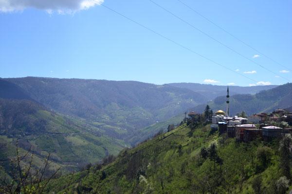 Auf dem Weg zum Schwarzmeer: Berghänge mit Nuss- und Teeanbau