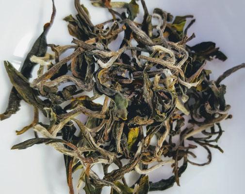 グレンバーン茶園 「ムーンシャイン」ふわふわとした茶葉