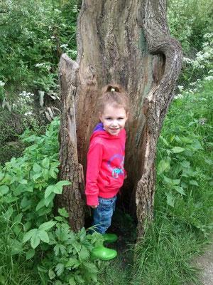"""Nog een """"kabouter"""" boom Coraline Rosman"""