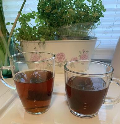 Tee-Test-Wandlitz-Seitenasicht