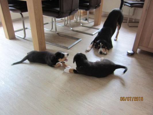 Oma Aluna möchte mit Casimir und Casper spielen