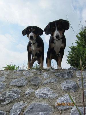 Aluna und Anca auf dem Geburtstagsspaziergang.