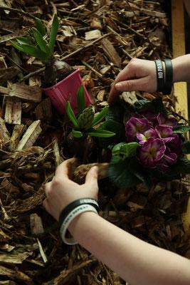 Mise en place des fleurs partie deux