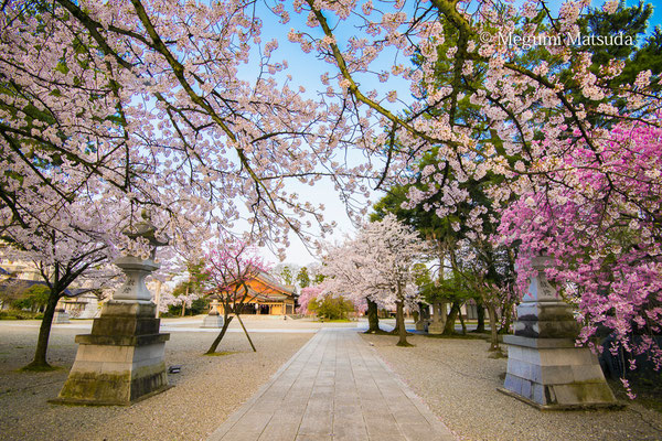 護国神社(富山市)