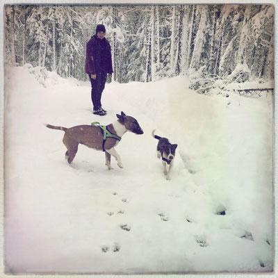 01.04.2015 - Aimy + Freundin im verschneiten Tirol