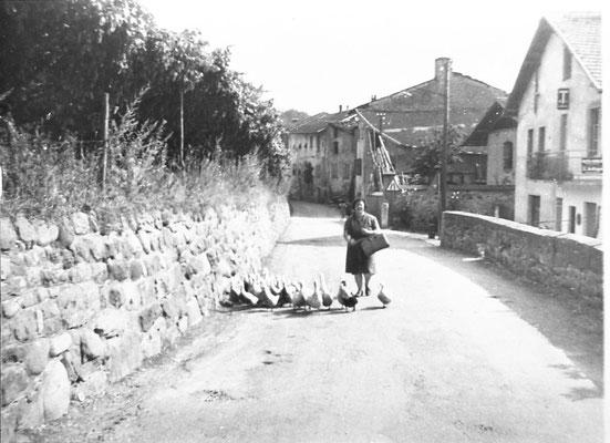 Scorcio dell'attuale via Pederzolli. In primo piano Ida Rossi. A sinistra l'appezzamento coltivato a vite, dove nel 1982 iniziarono i lavori di costruzione dell'insediamento ITEA, 1961. Da Onorati Carlo Alberto.