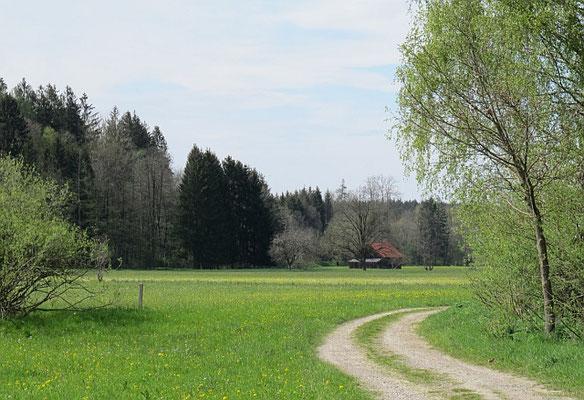 Ottobeuren (Westliches Günztal)