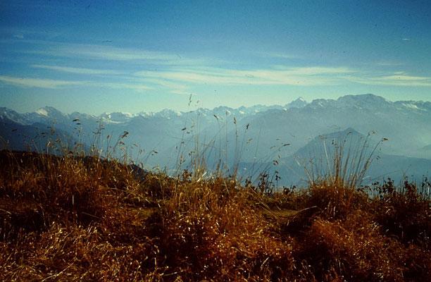 Grünten: Allgäuer Alpen
