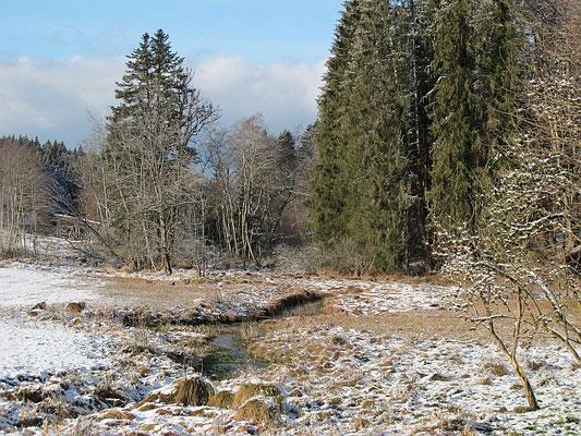 Bad Grönenbach-Ittelsburg (Ehwiesmühle mit Mühlbach)