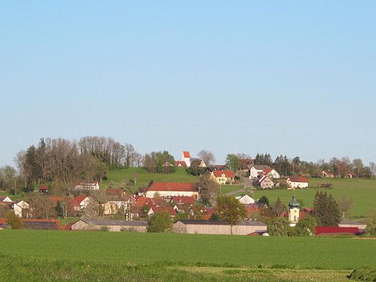 Lachen-Theinselberg (Burgstall)