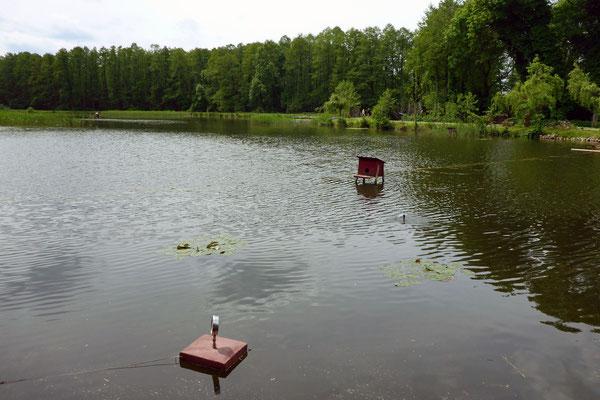 Der Fischteich ...