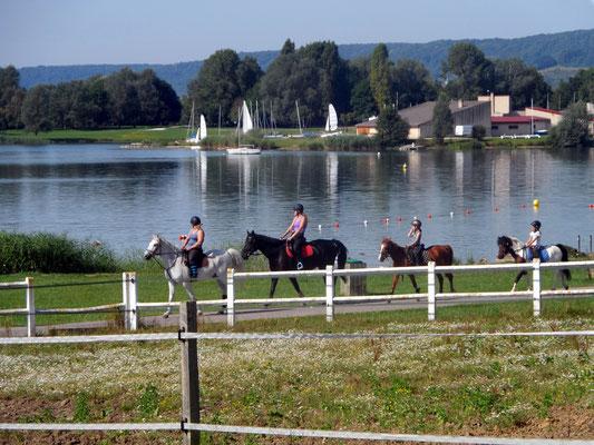 Equitation - Lac de Madine