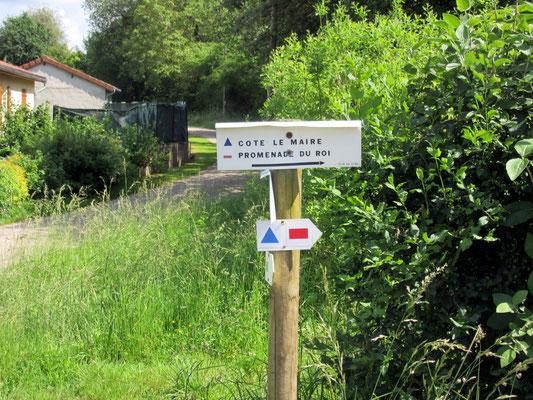 Parcours de randonnée dans les côtes de Meuse