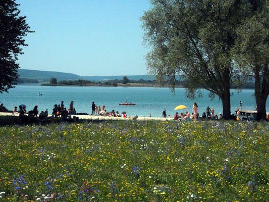 Plage du lac de Madine