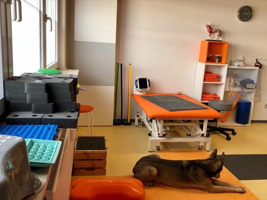 Behandlungsliege und diversem Equipment zur Bewegungstherapie,